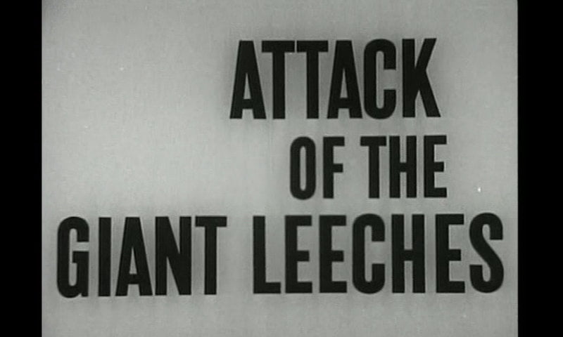 Giant Leeches title card