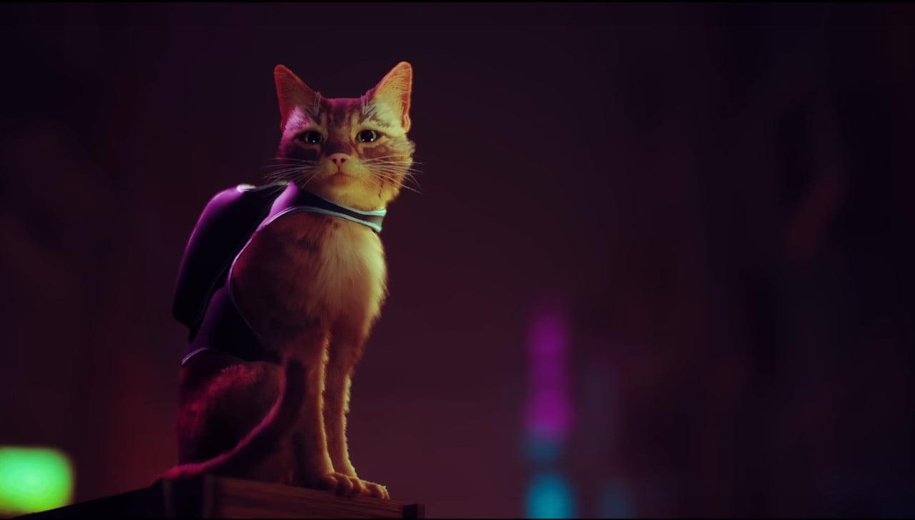 A cyberpunk cat