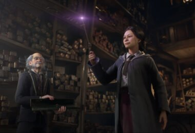 The wand shop in Hogwarts Legacy