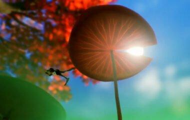 A giant mushroom