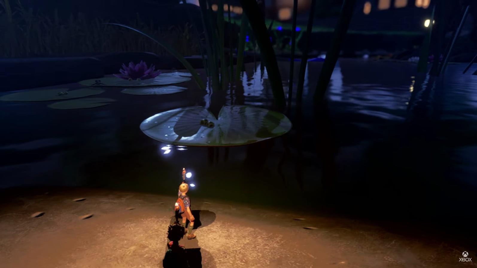 The koi pond at night