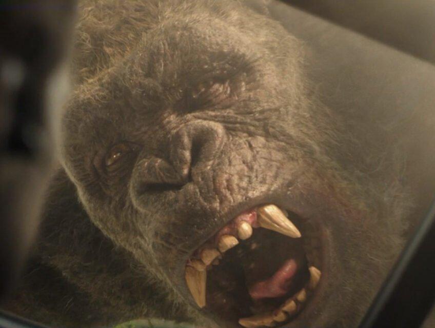 Kong as seen through glass